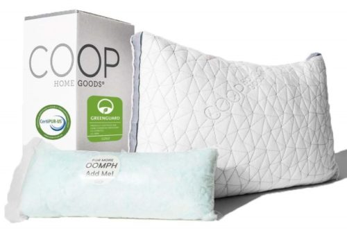 1. Coop Home Goods - Eden Shredded Memory Foam Pillow with Cooling Zippered Cover and Adjustable Hypoallergenic Gel Infused Memory Foam Fill