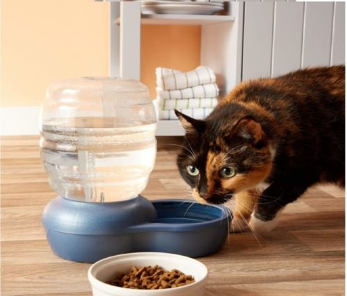 1.Petmate Replendish Gravity Waterer with Microban Cat and Dog Water Dispenser 4 Sizes