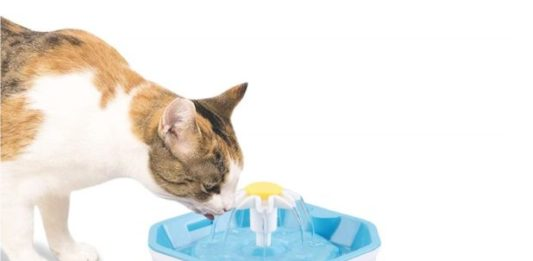 14.Shinea Cat Water Fountain, 1.6L Automatic Pet Water Dispenser Healthy & Hygienic Drinking Bowl Super Quiet for Cats, Dogs, Multiple Pets