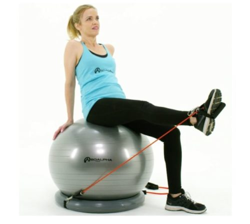 15.SoAlpha Premium Exercise Ball with 15LB Resistance Bands, Stability Base, Pump, 65 cm Fitness Ball, Supports up to 600LBS, Stability Ball with Gym Quality