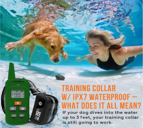 5.TBI Pro [All-New 2019 Dog Shock Training Collar with Remote Heavy-Duty, Long Range 2000 ft, Rechargeable & IPX7 Waterproof E-Collar Shock Collar for