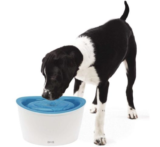 7.Zeus Fresh & Clear Elevated Dog and Cat Water Dispenser, Large Drinking Water Fountain with Purifying Filter, 6L Capacity