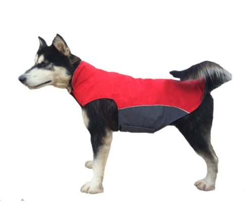 10.BONAWEN Winter Dog Coat Waterproof for Extra Large,Large Dog with Leash Hole, Chest up to 39