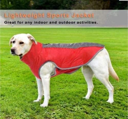 12.AOFITEE Waterproof Reflective Winter Dog Coat, Windproof Warm Fleece Lined Puppy Jacket, Lightweight Pet Sport Vest Outdoor Apparel for Small Medium & Large Dogs