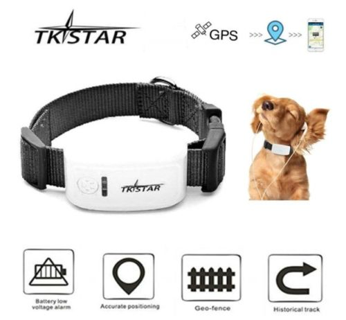12.TKSTAR Mini GPS Tracker for Pet Dog Cat GPS Collar Global Real-time Locator Remote Voice Monitor Free Online Tracking Platform TK909