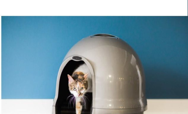 3.Petmate Clean Step Litter Dome