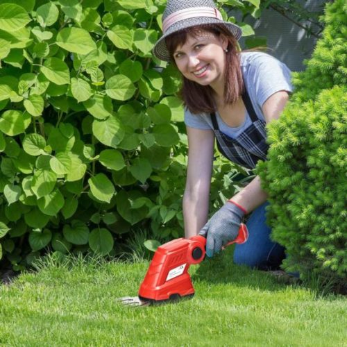 Goplus 2 in 1 Cordless Grass Shear + Hedge Trimmer w, 3.6V Rechargeable Battery